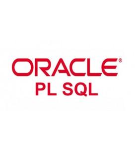 PL / SQL
