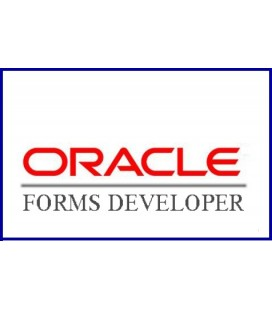 Oracle Developer (Etat)
